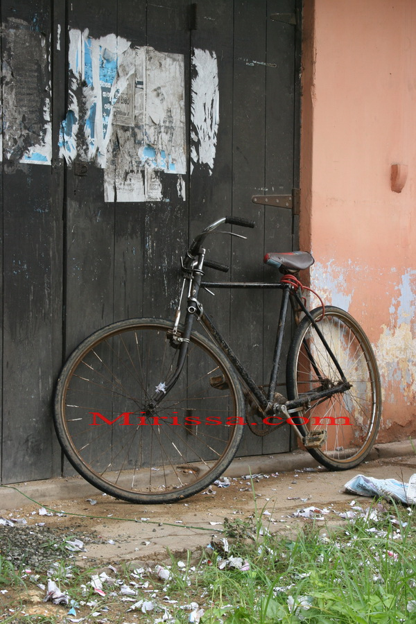 Bicycle for rent in Mirissa Beach, Sri Lanka